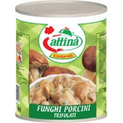 attina' funghi porcini trifolati gr 850 latta