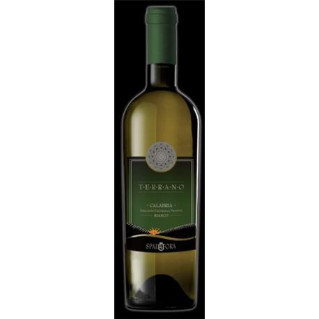 """Vino Calabria IGP """" Terrano"""" cl. 25"""